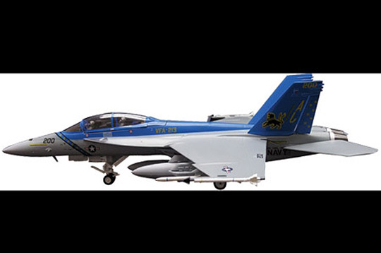 Schuco 3555017 F18 VF213 BLACK LIONS(SKY GUARDIANS) Miniatures 1:72